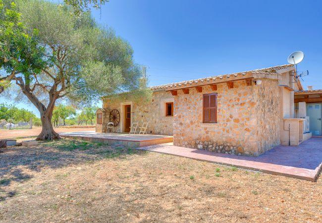 Villa en Calvià - VILLA CALVIA by Priority Villas