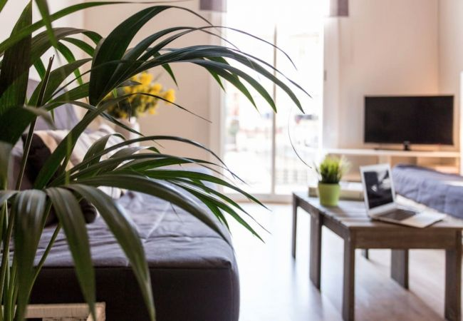 Apartment in Barcelona - BARCELONA FIRA 3