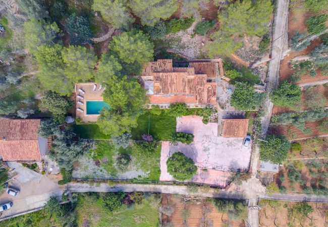 Villa in Alaro - VILLA ALARO by Priority