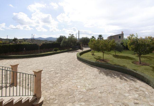 Villa in Manacor - VILLA SON FRAU
