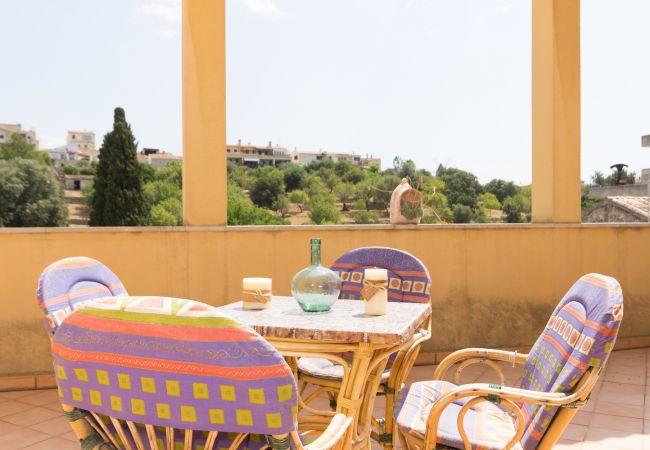 Villa in Campanet - VILLA CAMPANET